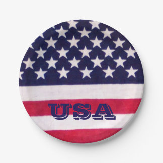 USA flag paper plate 7 Inch Paper Plate