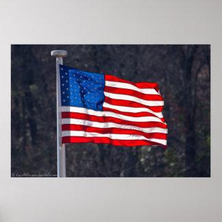 USA Flag Patriotic Prints & Posters