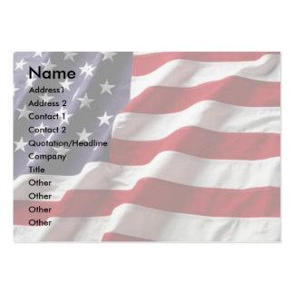 USA Flag Profile Card #3 Business Cards