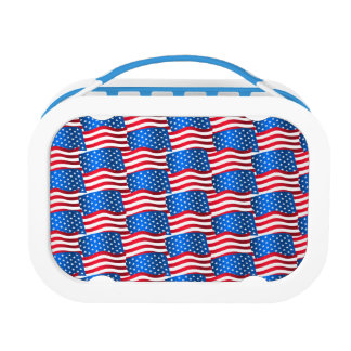 USA flags Lunch Box
