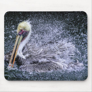 USA, Florida. Brown Pelican Mouse Mat