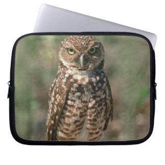 USA, Florida, Burrowing Owl. 2 Laptop Sleeve