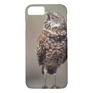 USA, Florida, Burrowing Owl. iPhone 8/7 Case