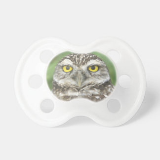 USA, Florida, Cape Coral, Burrowing Owl (Athene Baby Pacifier