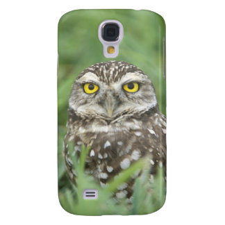 USA, Florida, Cape Coral, Burrowing Owl (Athene Galaxy S4 Case