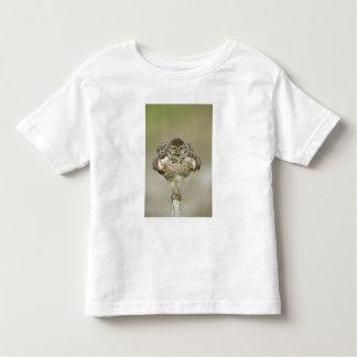 USA, Florida, Cape Coral, Close-up of burrowing Toddler T-Shirt
