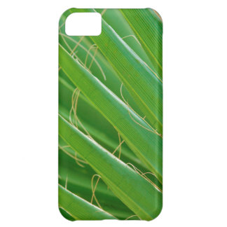 USA, Florida. Close Up Of Palm Fronds iPhone 5C Case