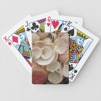 USA, Florida. Close Up Of Shells On Santa Rosa Bicycle Playing Cards