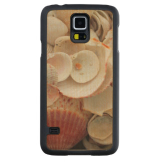 USA, Florida. Close Up Of Shells On Santa Rosa Carved Maple Galaxy S5 Case