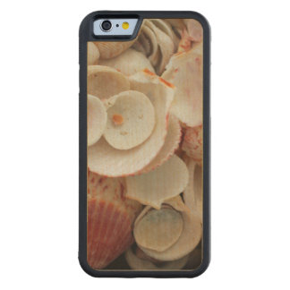 USA, Florida. Close Up Of Shells On Santa Rosa Carved Maple iPhone 6 Bumper Case
