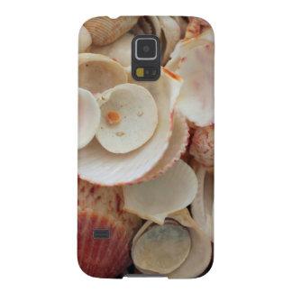 USA, Florida. Close Up Of Shells On Santa Rosa Galaxy S5 Case
