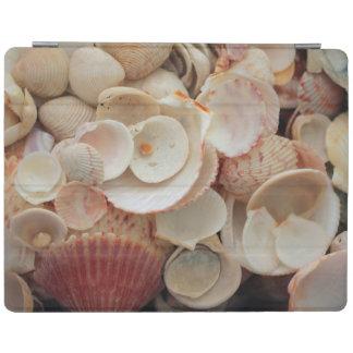 USA, Florida. Close Up Of Shells On Santa Rosa iPad Cover