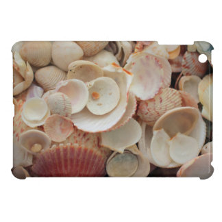 USA, Florida. Close Up Of Shells On Santa Rosa iPad Mini Cover