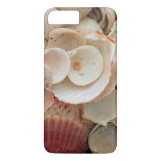 USA, Florida. Close Up Of Shells On Santa Rosa iPhone 8 Plus/7 Plus Case