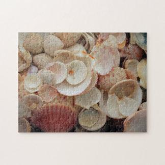 USA, Florida. Close Up Of Shells On Santa Rosa Jigsaw Puzzle