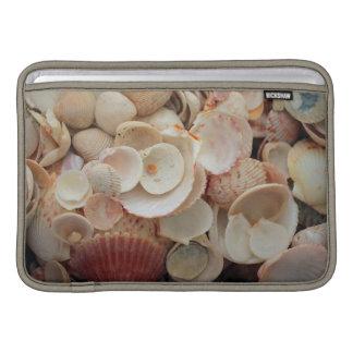 USA, Florida. Close Up Of Shells On Santa Rosa MacBook Sleeve