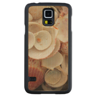 USA, Florida. Close Up Of Shells On Santa Rosa Maple Galaxy S5 Case