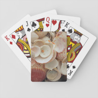 USA, Florida. Close Up Of Shells On Santa Rosa Playing Cards