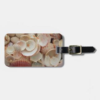 USA, Florida. Close Up Of Shells On Santa Rosa Travel Bag Tags