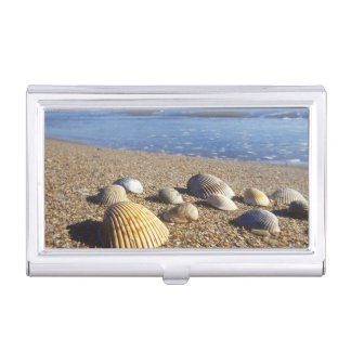 USA, Florida, Coastal Sea Shells Business Card Case