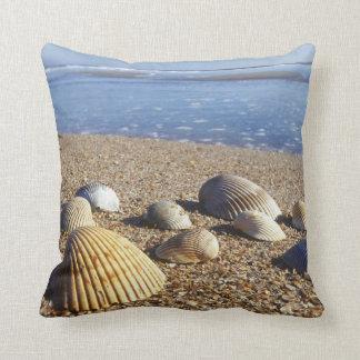 USA, Florida, Coastal Sea Shells Cushion