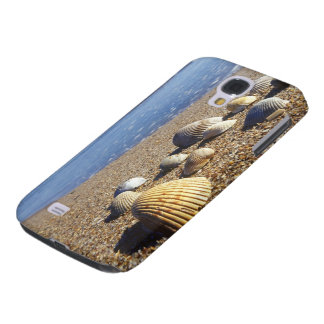 USA, Florida, Coastal Sea Shells Galaxy S4 Case