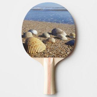 USA, Florida, Coastal Sea Shells Ping Pong Paddle