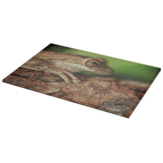 USA, Florida, Cuban Tree Frog. Cutting Board