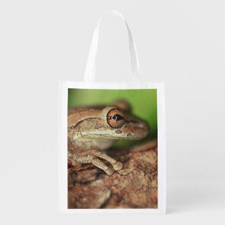 USA, Florida, Cuban Tree Frog. Reusable Grocery Bag