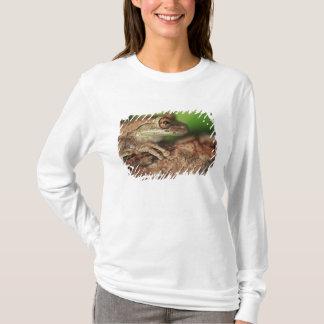 USA, Florida, Cuban Tree Frog. T-Shirt