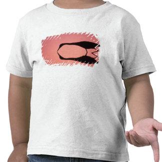 USA, Florida, Ding Darling National Wildlife T-shirts
