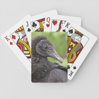 USA, Florida, Everglades National Park 2 Playing Cards