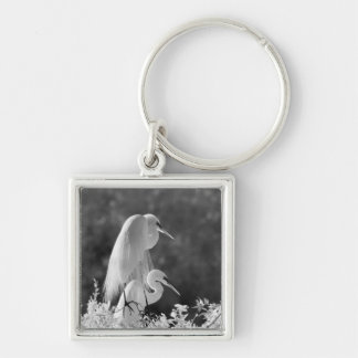 USA, Florida, Great Egret (Ardea alba) infrared Silver-Colored Square Key Ring
