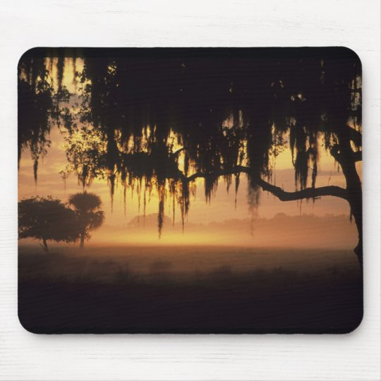 USA, Florida, Lake Kissimmee. Sunrise silhouette Mouse Mat