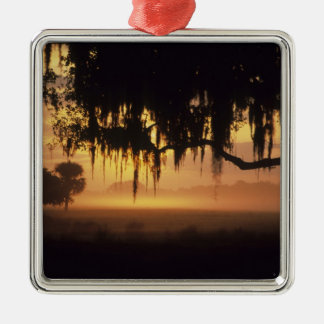 USA, Florida, Lake Kissimmee. Sunrise silhouette Silver-Colored Square Decoration