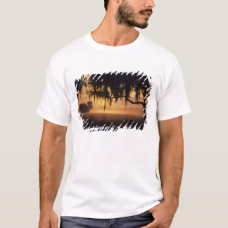 USA, Florida, Lake Kissimmee. Sunrise silhouette T-Shirt