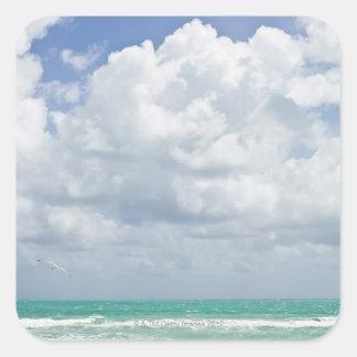 USA, Florida, Miami, Landscape with sea Square Sticker