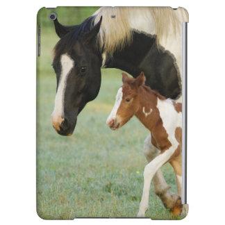 USA, Florida, Newborn Paint filly iPad Air Case