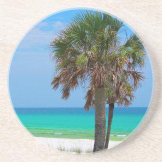 USA, Florida. Palm Trees On Emerald Coast Beverage Coaster