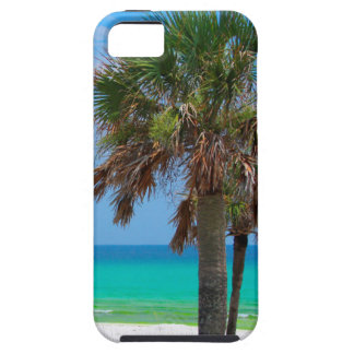 USA, Florida. Palm Trees On Emerald Coast iPhone 5 Covers
