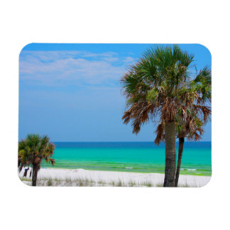 USA, Florida. Palm Trees On Emerald Coast Magnet