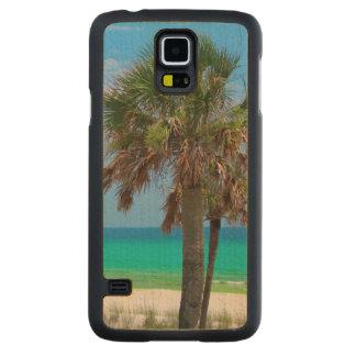 USA, Florida. Palm Trees On Emerald Coast Maple Galaxy S5 Slim Case