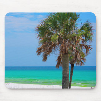 USA, Florida. Palm Trees On Emerald Coast Mouse Mat