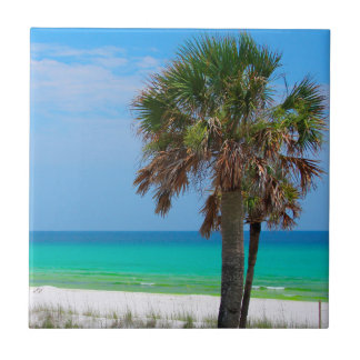 USA, Florida. Palm Trees On Emerald Coast Tile