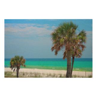 USA, Florida. Palm Trees On Emerald Coast Wood Print