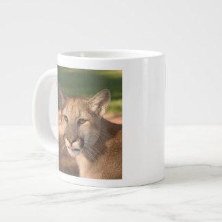 USA, Florida panther (Felis concolor) is also Large Coffee Mug
