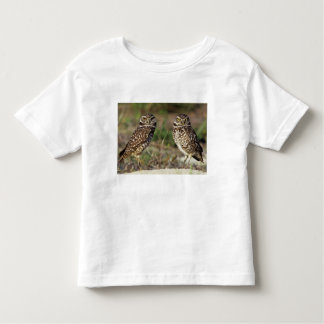 USA, Florida, Sanibel Island. Close-up of Toddler T-Shirt