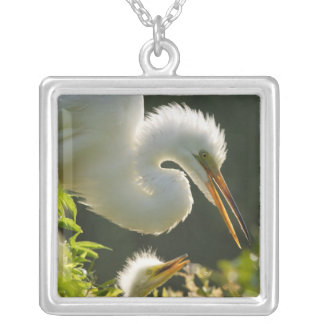 USA, Florida, St. Augustine, Alligator farm Silver Plated Necklace
