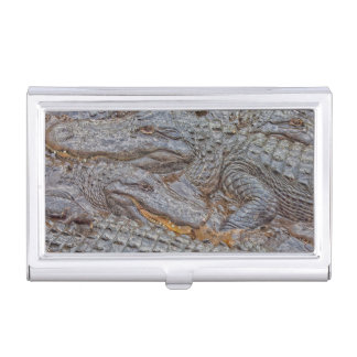 USA, Florida, St. Augustine, Alligators 2 Business Card Holders