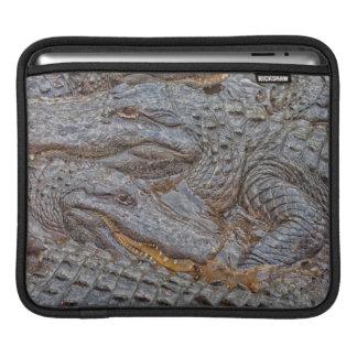 USA, Florida, St. Augustine, Alligators 2 iPad Sleeve